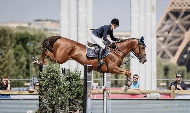 Sporthorses
